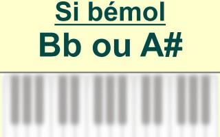 Accord Si b