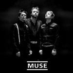 Muse 300x300