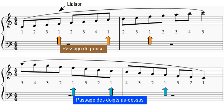 Passage du pouce de la main droite pour la gamme de Do. En montant, le pouce passe en dessous ; en descendant les doigts (3 puis 4 passent au-dessus). Dans une gamme ou un arpège, le passage du pouce permet de lier les notes.